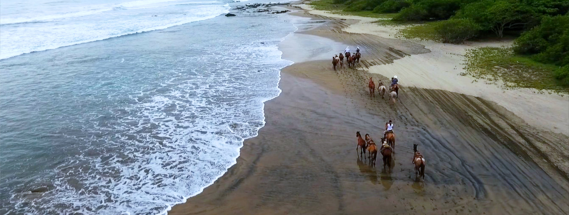 discover troncones saladita majahua mexico playa reservaciones hospedaje ixtapa guerrero travel near me booking hotel cheap hotel beach