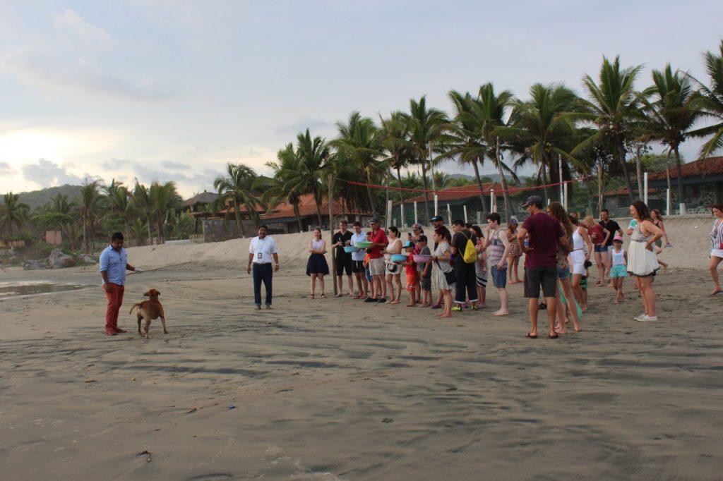 discover troncones saladita majahua mexico playa reservaciones hospedaje ixtapa guerrero travel near me booking hotel cheap hotel people troncones