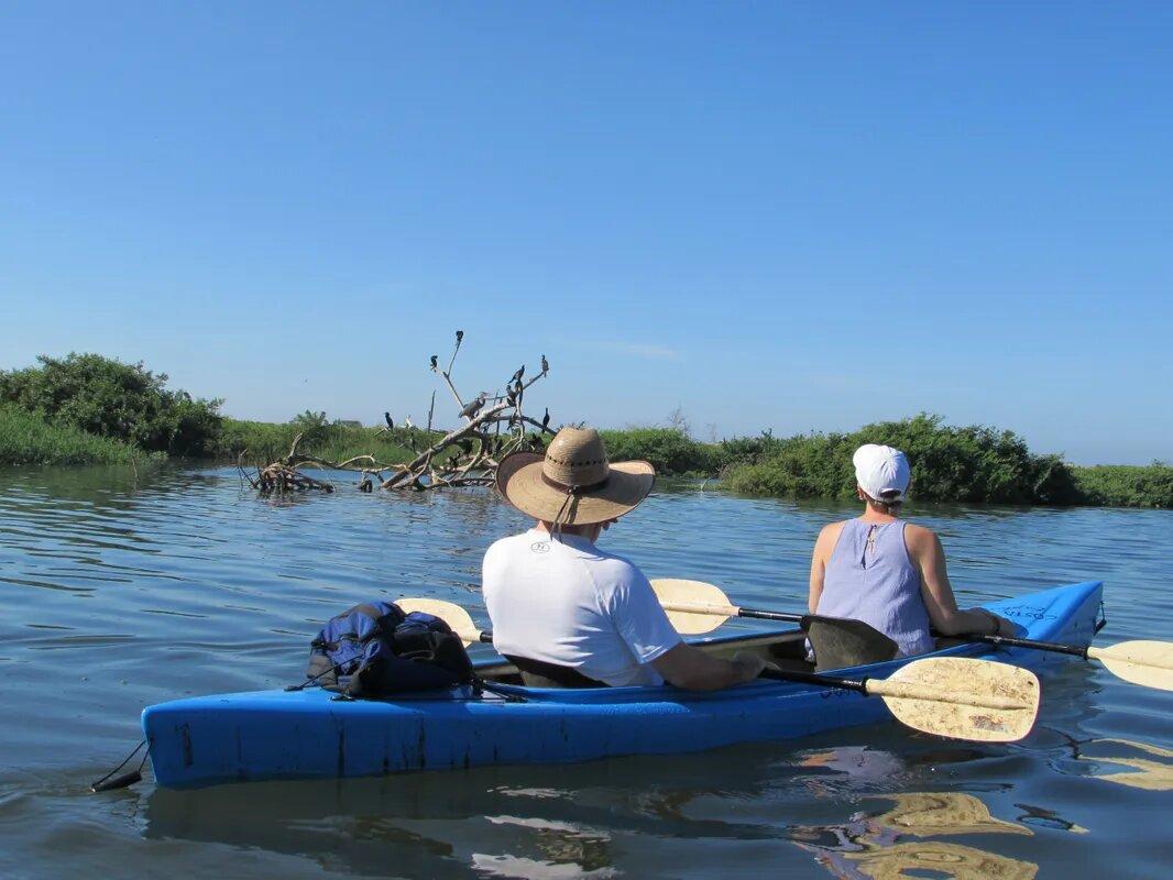 discover troncones saladita majahua mexico playa reservaciones hospedaje ixtapa guerrero travel near me booking hotel cheap hotel costa nativa river kayak